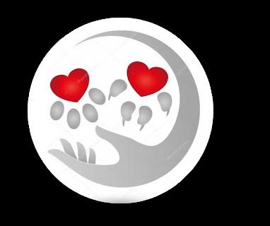 rachel tarot logo